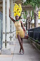 Renton Multicultural Festival, Washington, USA.
