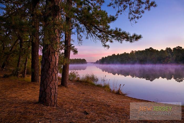 Harrisville Pond, Pinebarrens, New Jersey