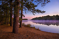 Harrisville Pond, Pinebarrens, New Jersey