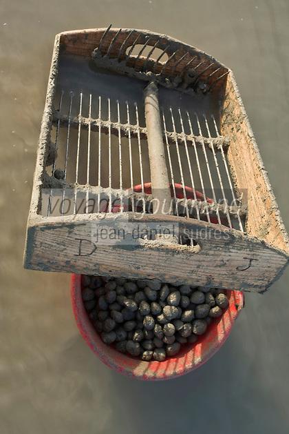 Europe/France/Picardie/80/Somme/Baie de Somme/Le Hourdel: ramassge des coques de La Baie de Somme, à la Pointe du Hourdel -grille des ramasseurs pour trier les sacs de coques