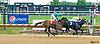 Ellie Girl winning at Delaware Park on 6/13/17