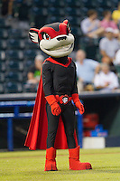 """Richmond Flying Squirrels mascot """"Nutzy"""" prior to the game against the New Hampshire Fisher Cats at The Diamond on June 13, 2014 in Richmond, Virginia.  The Fisher Cats defeated the Flying Squirrels 6-3.  (Brian Westerholt/Four Seam Images)"""