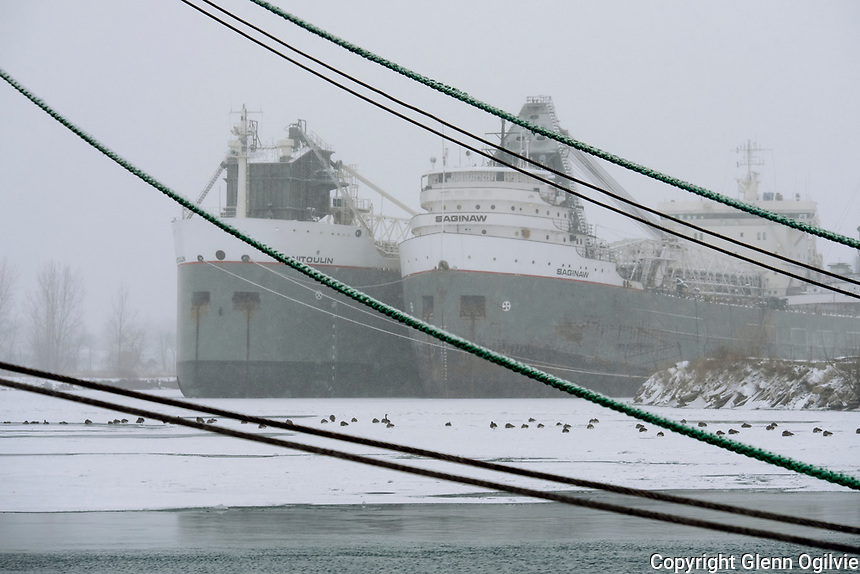 Great Lakes freighters Manitoulin and Saginaw berthed in the North Slip of  Sarnia Harbour