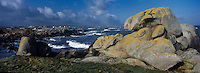 Europe/France/Bretagne/29/Finistère/  Kerlouan: Côte rocheuse à Ménéham