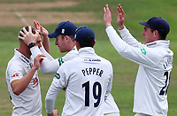 Jamie Porter (left) of Essex is congratulated by his team mates having taken the wicket of Luke Wood during Nottinghamshire CCC vs Essex CCC, Specsavers County Championship Division 1 Cricket at Trent Bridge on 10th September 2018