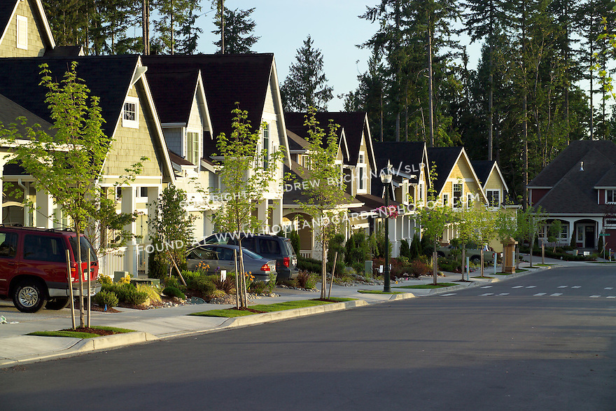a long row of high-end builder spec homes glowing in early morning sunshine backed by blue sky and tall evergreens, lines this residential street in a suburban master-planned community east of Seattle
