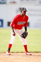 June 19, 2009:  Shortstop Hector Alvarez of the Batavia Muckdogs in the field during a game at Dwyer Stadium in Batavia, NY.  The Muckdogs are the NY-Penn League Short-Season Class-A affiliate of the St. Louis Cardinals.  Photo by:  Mike Janes/Four Seam Images
