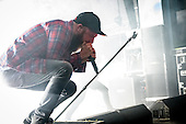 IN FLAMES (2016)