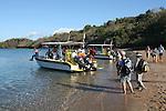 excursion to see whales and dolphinsexcursion en bateau pour aller voir les dauphins et baleines.