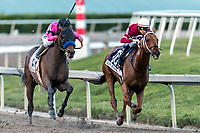 HALLANDALE BEACH, FL - JAN 27:Gun Runner #10 with Florent Geroux in the irons for trainer Steven M. Asmussen leads the field along the final stretch of the $16,000,000 Pegasus World Cup Invitational Stakes (G1) at Gulfstream Park on January 27, 2018 in Hallandale Beach, Florida. (Photo by Bob Aaron/Eclipse Sportswire/Getty Images)