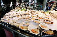 Frutti di mare al mercato del pesce a Rialto, Venezia.<br /> Sea fruits on sale at Rialto fish markets, in Venice.<br /> UPDATE IMAGES PRESS/Riccardo De Luca