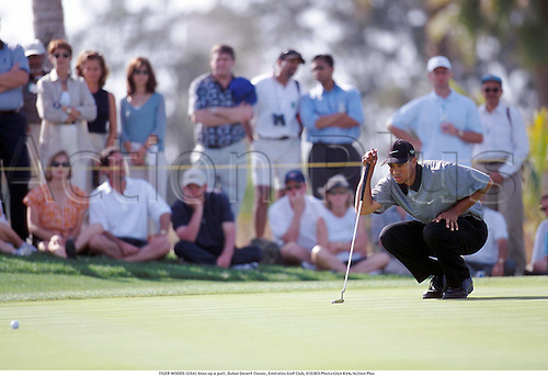 TIGER WOODS (USA) lines up a putt, Dubai Desert Classic, Emirates Golf Club, 010303 Photo:Glyn Kirk/Action Plus...2001.Golf.Putting.golf.golfer golfers