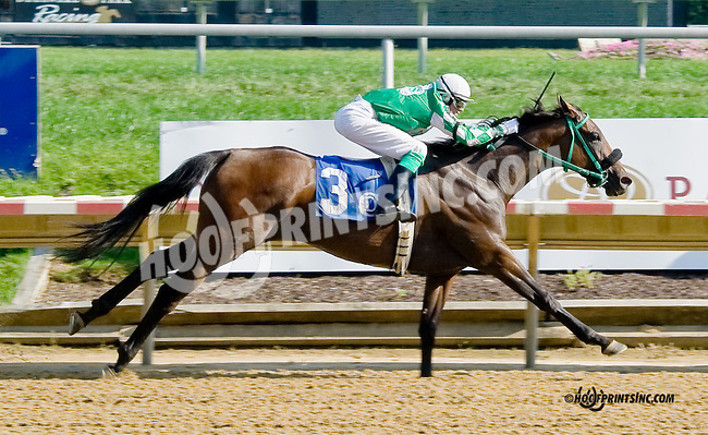 Nickyrocksforpops winning at Delaware Park on 9/4/14