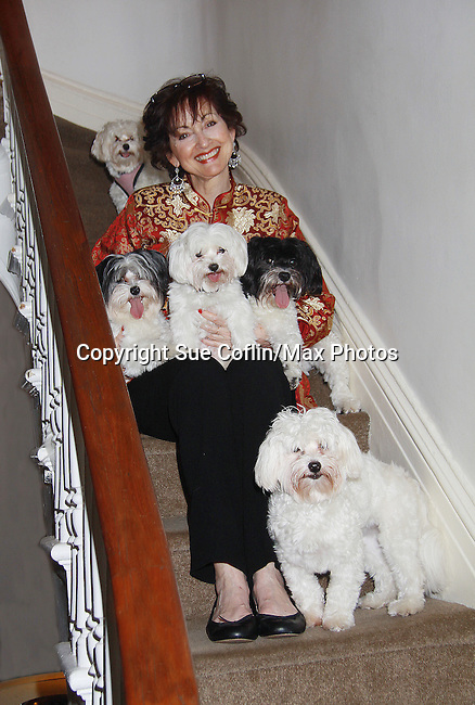 "One Life To Live Robin Strasser poses with her dogs and their puppies on June 30, 2011- Robin Strasser - One Life To Live - with her puppies and mom and dad:.Mother: Bisou - means kiss in French - she's a 6.5 lb MALTESE.Father: Rocket Man - a manly Havanese who became a father at 5 and a half months!.Their off-spring:.Lincoln - all white with curly hair, about 12 lbs. & recently moved to Mississippi.Spark Man - black and white like his dad - we call him Brad Pitt cuz he's SO beautiful - straight hair coat..Bessie Mae Mucho - a sweet Spanish send up of bessame mucho which means: kiss me A LOT...AND she does!.Cadeau - means GIFT in French...she's got that super short lamb hair cut because she's so popular with the ""pack"" they all wanna bite and and kiss her..So that's the FAMILY. (Photo by Sue Coflin/Max Photos)"