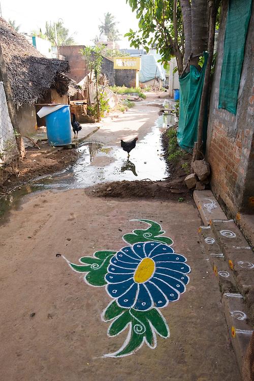 Pongal kolams in the village of  Kuylapalayam, Tamil Nadu.