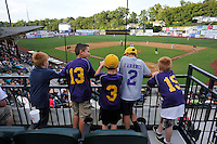 Five boys watch a game between the Pulaski Yankees and Bristol Pirates from an upper reserved deck on Tuesday, July 5, 2016, at Calfee Park in Pulaski, Virginia. Pulaski won, 6-3. (Tom Priddy/Four Seam Images)