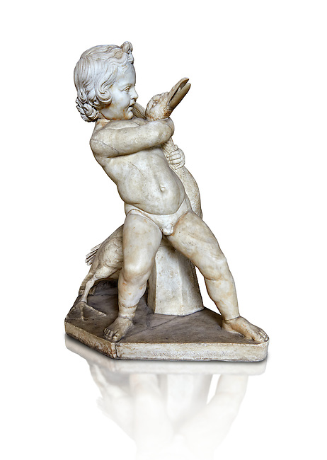 Roman statue of a Boy strangling a goose, a Roman copy of a late 3rd century Hellenistic bronze statue attributed to Boethos. Excavated from the Villa dei Quintilli on the Appian Way, inv 2655, Vatican Museum Rome, Italy,  white background