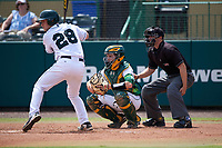Dartmouth Big Green designated hitter Rob Emery (28), South Florida Bulls catcher Tyler Dietrich (38), and umpire Chris Tipton await the pitch during a game on March 27, 2016 at USF Baseball Stadium in Tampa, Florida.  South Florida defeated Dartmouth 4-0.  (Mike Janes/Four Seam Images)