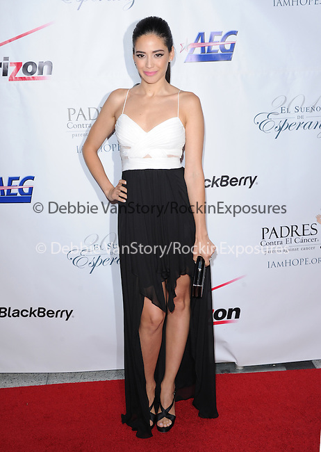 Edy Ganem  attends 13th Annual El Sueño de Esperanza Gala at Club Nokia in Los Angeles, California on September 24,2013                                                                               © 2013 Hollywood Press Agency