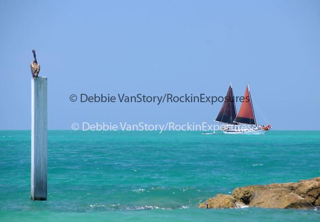 The Shoreline of Fort Myers  in Key West, Florida on May 26,2009                                                                     Copyright 2009 Debbie VanStory / RockinExposures