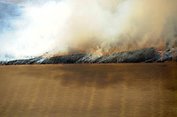 Burning crop field, near Longmont, Colorado. March 2010