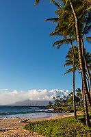 Palm trees and a reclining beach chair on Po'olenalena Beach in the afternoon sun, Maui.