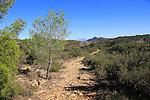 Pathway through upland mountain landscape near Xalo or Jalon, Marina Alta, Alicante province, Spain