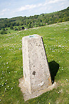 Concrete triangulation pillar on chalk hilltop Giant's Grave, near Oare, Wiltshire, England, UK