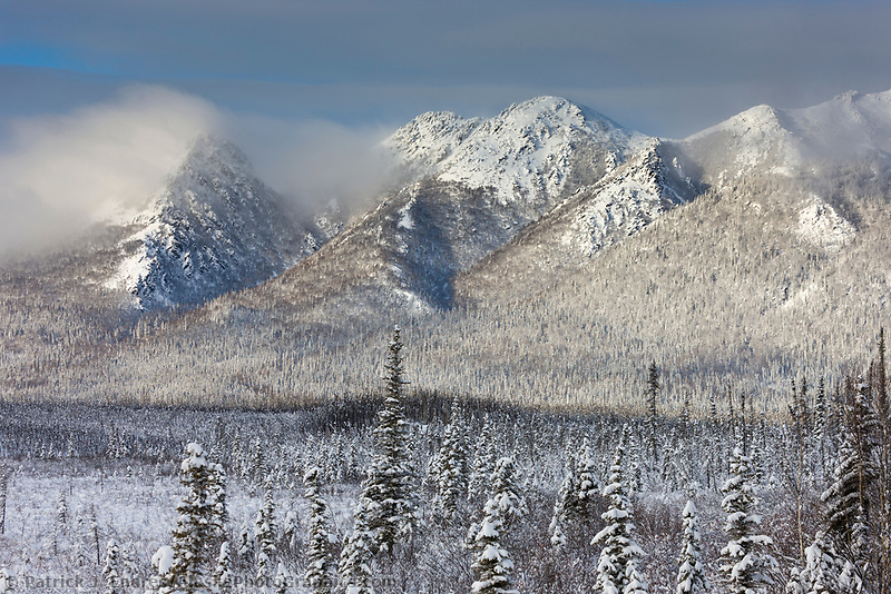 Winter landscape after a fresh snowfall on the foothills of the Brooks mountain range, arctic, Alaska.