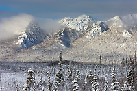 Winter landscape after a fresh snowfall on the foothills of the Brooks Range, Arctic, Alaska.