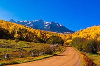Fall color, Last Dollar Road, between Telluride and Ridgway, San Juan Mountains, southwest Colorado USA.
