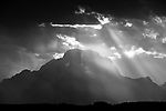 Grand Teton National Park - Black & White