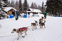 Thursday March, 2012   Colleen Robertia leaves the Ophir checkpoint.   Iditarod 2012.