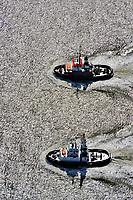 Schlepper auf der Weser: EUROPA, DEUTSCHLAND, BREMERHAVEN, (EUROPE, GERMANY), 16.06.2010  Schlepper, auch Schleppschiffe genannt, (engl. tugboat oder tug) sind Schiffe mit leistungsstarker Antriebsanlage, die zum Ziehen und Schieben anderer Schiffe oder großer schwimmfaehiger Objekte eingesetzt werden. Meist werden zum Ziehen Schlepptrossen verwendet, die am Schlepper an Haken eingehaengt oder an Seilwinden aufgerollt sind. In Deutschland gibt es zusammen mit den Schubschiffen 450 Stueck