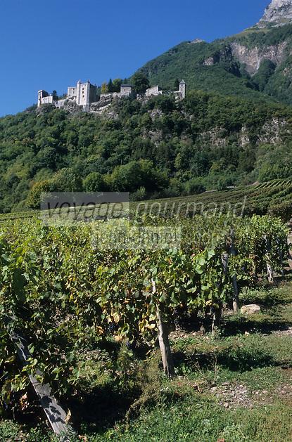 Europe/France/Rhone-Alpes/73/Savoie/Env de Saint-Pierre-d'Albigny : Vignoble AOC Vins de Savoie et le château de Miolans