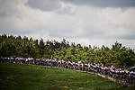 The peloton in action during Stage 9 of the 2019 Tour de France running 170.5km from Saint-Etienne to Brioude, France. 14th July 2019.<br /> Picture: ASO/Pauline Ballet | Cyclefile<br /> All photos usage must carry mandatory copyright credit (© Cyclefile | ASO/Pauline Ballet)