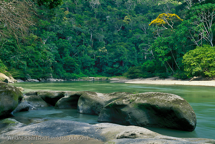 Tuichi River in lowland tropical rainforest, Madidi National Park, Bolivia.