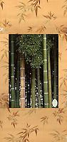 Bamboo Thicket at Halla Arboretum, Jeju Island, South Korea. Giclee and satin brocade.