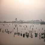 Sudhanya Khali, Unesco reserve in the Sundarban with more than 100 islands,home to the largest mangrove forest in the world. Sunset at the Sunderban, 9 December 2010..