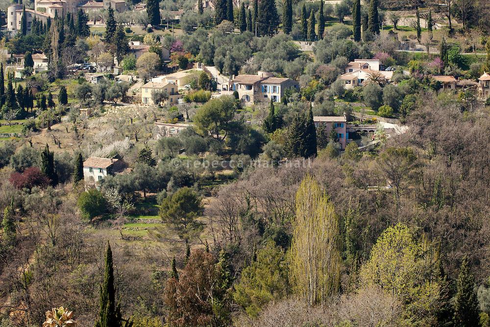 The hillside around Nicole Bekdache's home near Grasse, France, 30 March 2012.