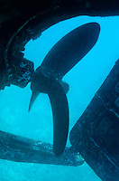 View of the propeller and rudder of a wrecked ship underwater.