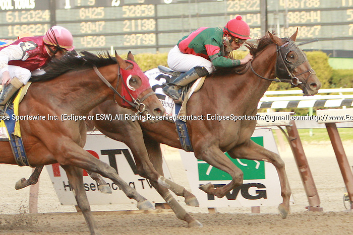 2011 04 09: Toby's Corner with Eddie Castro upset and win the one million dollar Resort's World New York Casino Wood Memorial Stakes at 1 1/8 mile at Aqueduct Racetrack. Trainer Graham Motion. Owner Dianne D. Cotter