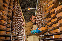 Italie, Val d'Aoste,  Issogne: Cave d'affinage de la Fontina // Italy, Aosta Valley,  Issogne:  Fontina maturing cellar <br /> <br /> AUTO N°: 2013-157