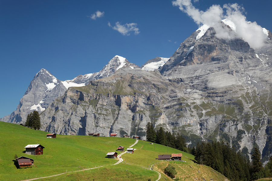Looking across meadow and village of Gimmeln, Eiger, Mönch and Jungfrau in background, Switzerland