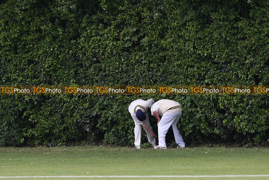 The search for the ball commences - Upminster CC vs Ardleigh Green CC - National Club Championship 1st Round - 16/05/10 - MANDATORY CREDIT: Gavin Ellis/TGSPHOTO - Self billing applies where appropriate - Tel: 0845 094 6026