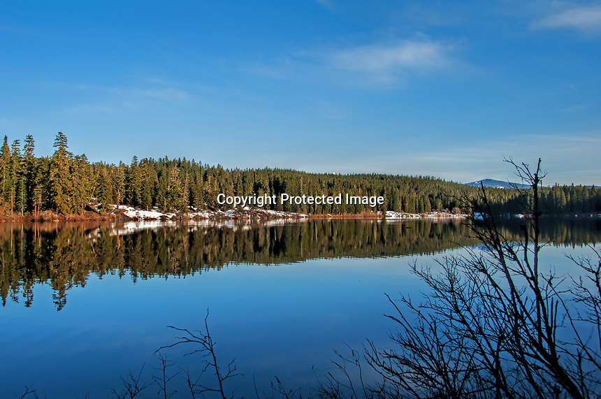 An early spring view of Clear Lake in the Willamette National Forest, Oregon.
