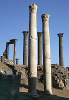 2 Roman columns, behind which 3 Corinthian columns, each 14m high, 1,20m circumference, Nymphaeum Temple, 2nd century AD, Bosra, Syria Picture by Manuel Cohen