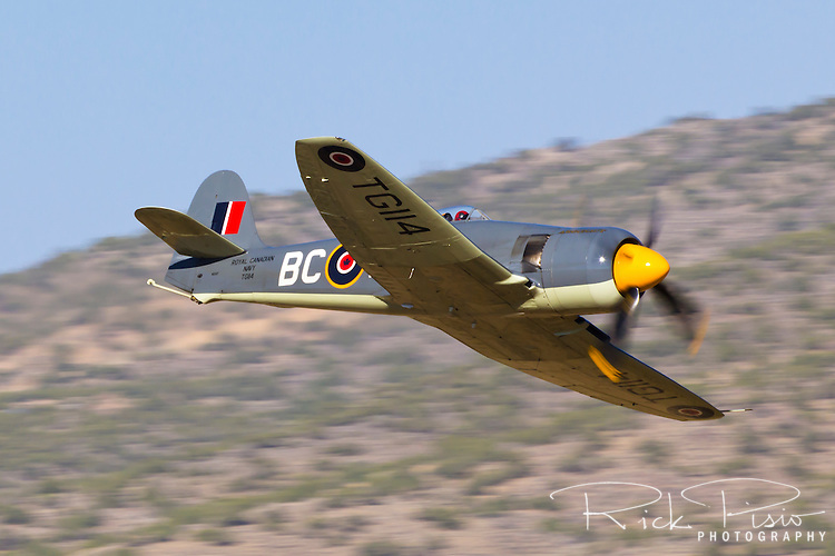 """Hawker Sea Fury """"Argonaut"""" in flight during the 2013 National Championship Air Races in Reno, Nevada."""