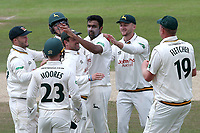 Ravi Ashwin of Nottinghamshire celebrates taking the wicket of Tom Westley during Nottinghamshire CCC vs Essex CCC, Specsavers County Championship Division 1 Cricket at Trent Bridge on 1st July 2019