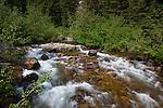 Cascade Creek on Jenny Lake Trail, at Grand Teton National Park, Wyoming